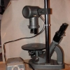 Leitz Inverted Tissue culture Microscope